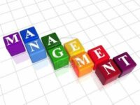 Licence Pro – Management International (Bac+3)
