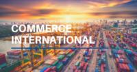 DUT – Marketing et Commerce International (Bac+2)